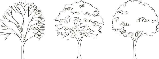 植物のCADデータ 樹木CADデータ - フリーダウンロード 樹木セットのCADデータ top